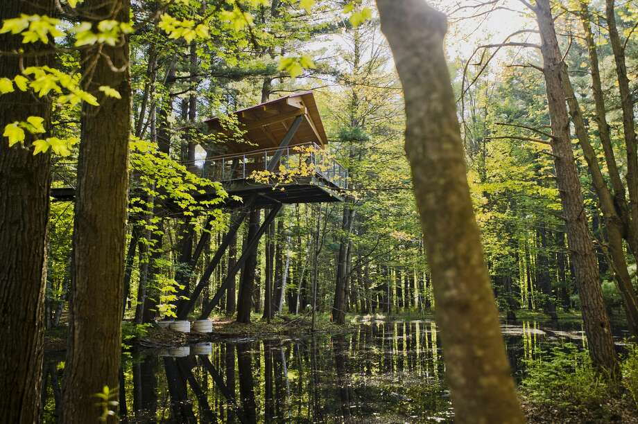 The canopy walk at Whiting Forest of Dow Gardens. Photo: (Katy Kildee/kkildee@mdn.net)