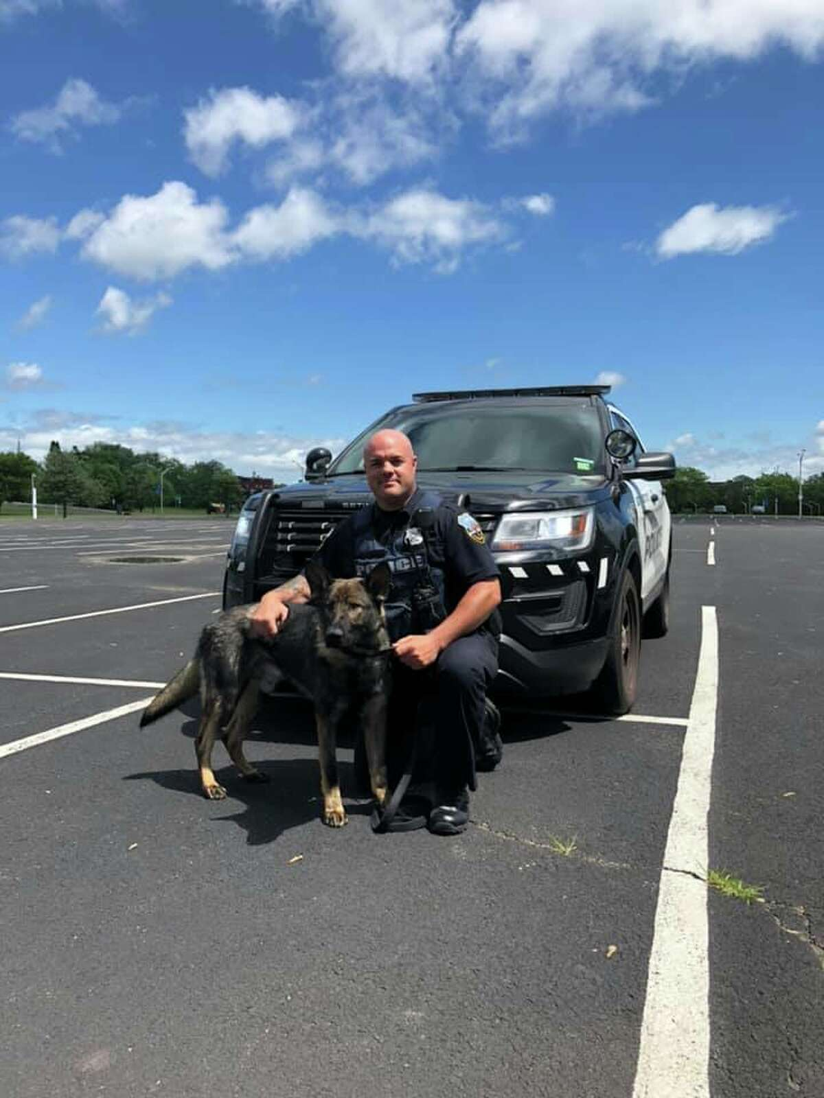 The Schenectady Police Department welcomed Mynderse to its canine program. He is shown with his handler, identified as Officer Smith, on Tuesday, June 11, 2019.
