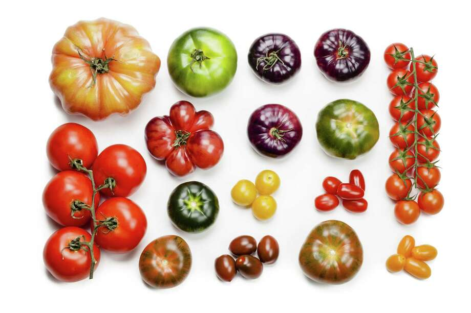 Tomatoes might soon be getting a flavor boost, thanks to better scientific understanding of the fruit. (Getty Images) Photo: Fcafotodigital / E+