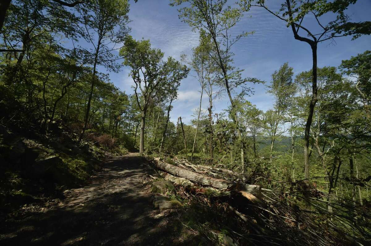 Hamden, Connecticut - Thursday, August 2, 2018: Sleeping Giant State Park, hit hard by a tornado in May, has gone a long way in clearing downed trees on the Tower Trail and the Pine Grove picnic area is still in the difficult process of cleaning up the heavily damaged area. The tower trail needs to be widened so heavy equipment can clear the logs and debris stacked along the trail, says Chris Collibee, Connecticut Department of Energy and Environmental Director of Communication. The trail will also be safer for hikers, first responders and park staff and the Pine Grove picnic area needs to be seeded with grass, Collibee says