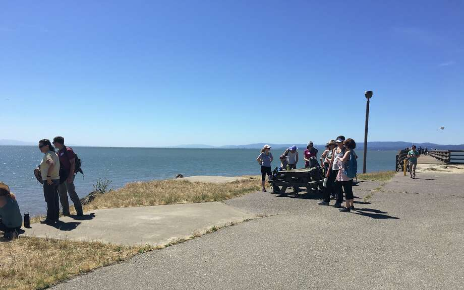 Crosstown Trail walkers enjoy the view at the fishing pier in Candlestick Point. Click through this gallery for tips from hikers before you check out San Francisco's newest trail connecting neighborhoods, parks and more. Photo: Nancy Botkin