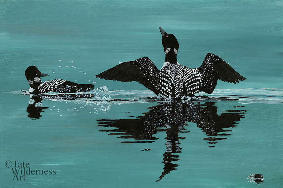 Showing off is an image of loon that kickstarted John Tate's painting career. / Profiles Printmaking Studio