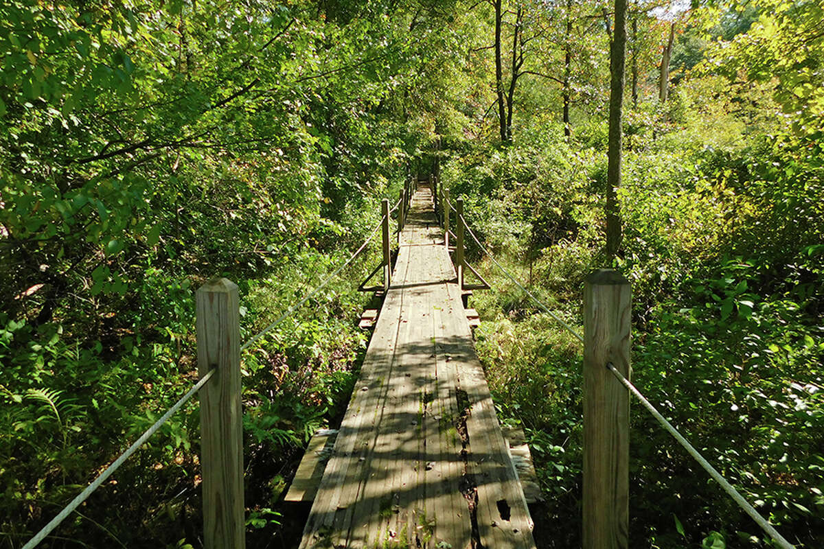 One of the bridges runners will cross during this year's Where the Wild Things Run! 5K.