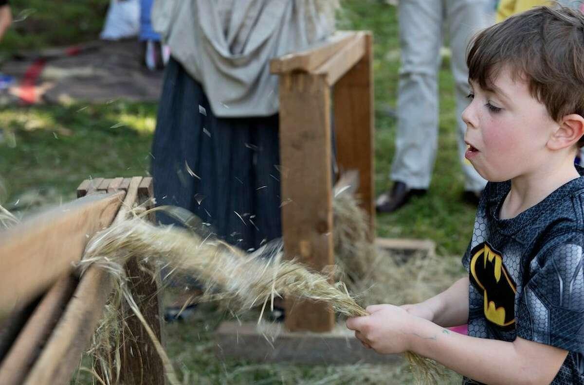 wilt Ambler Farm Day-2