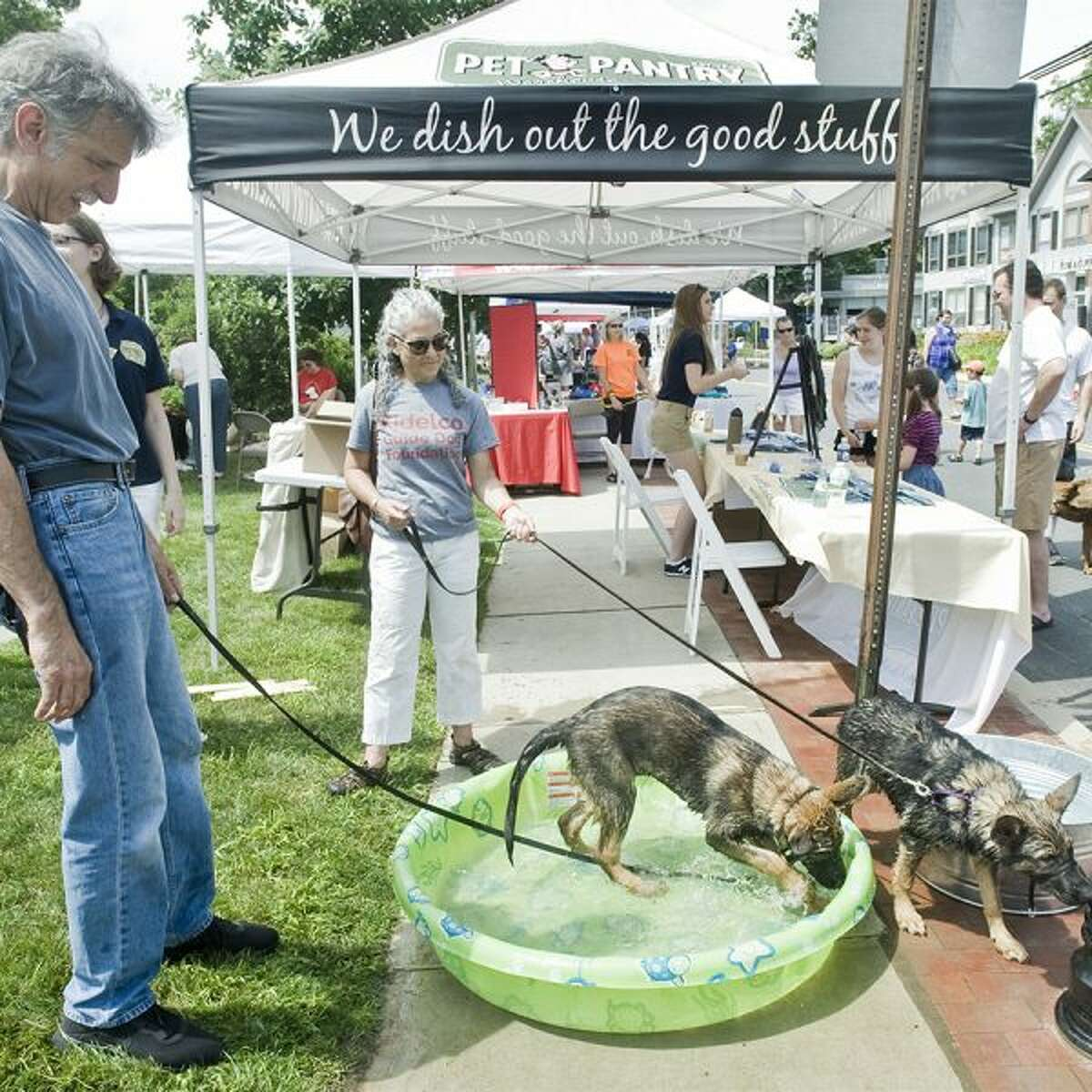 Dogs are invited to street fair, with activities planned just for them. - Scott Mullin photo