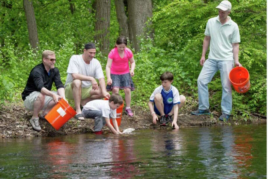 The Mianus chapter of Trout Unlimited will host a free Family Fishing Clinic & Kids Trout Stocking on Saturday, May 12, at Merwin Meadows Park in Wilton. — Lawrence Frank photo