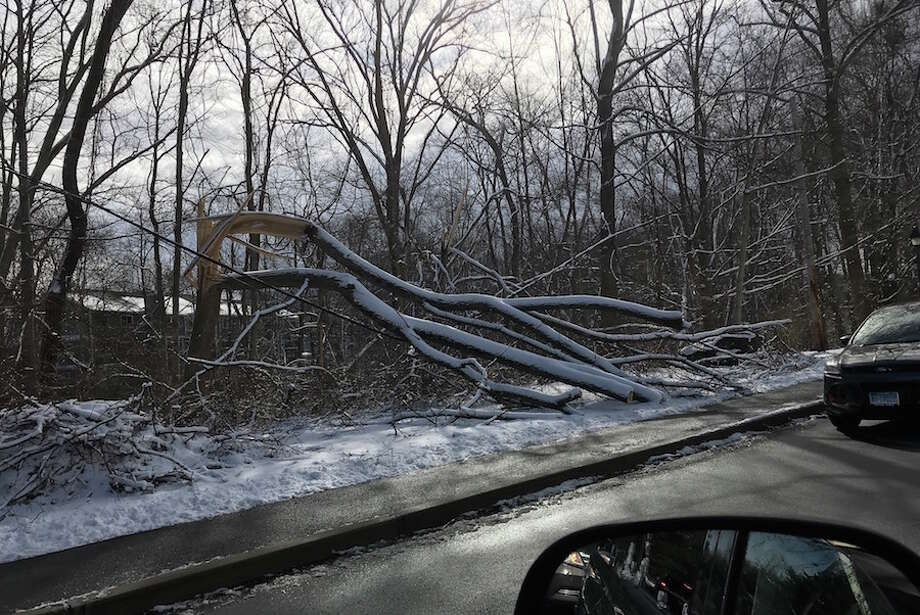 A broken tree leans heavily on wires along River Road. — Susan Shultz photo