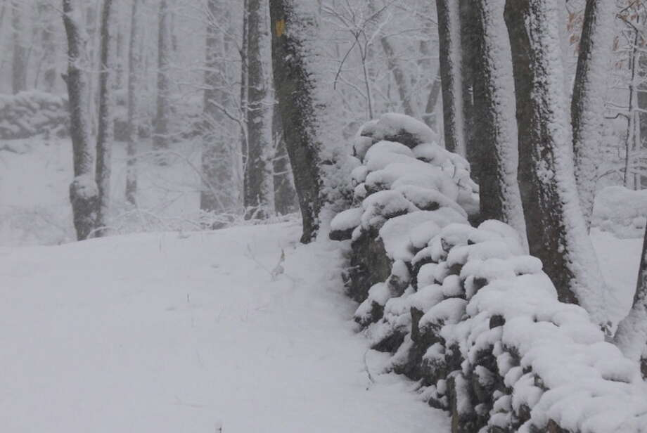 Snow falls along Weir Farm Preserve trail. — Brooks Garis photo