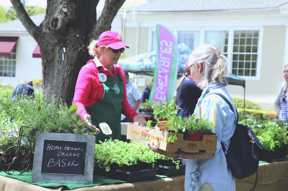 Nancy Greeley sells herbs at last year's plant sale presented by the Wilton Garden Club. This year's sale is Friday and Saturday.