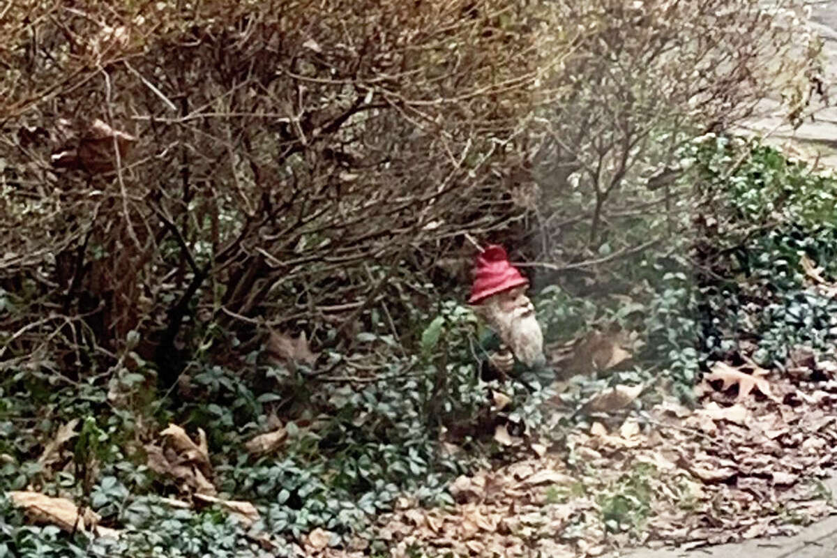 Gnick the Gnome in the Cider Mill's north side courtyard on Jan. 10.