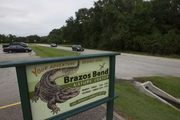 Vehicles drives by in the Brazos Bend State Park on Friday, Sept. 12, 2014, in Needville.