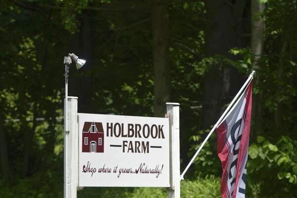 The owners of Taproot restaurant in Bethel and Redding Roadhouse are leasing Holbrook Farm in Bethel. Friday, June 14, 2019, in Bethel, Conn.