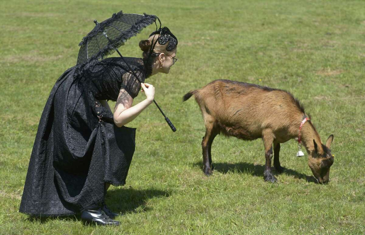 Goat Larp 2, Redding For the uninitiated,