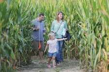In this 2017 photo, Chris and Amanda Sellers, of Godfrey, take their daughter, Gwen, then 4, through the Great Godfrey Maze. Organizers say the wet spring will not affect this year's maze.