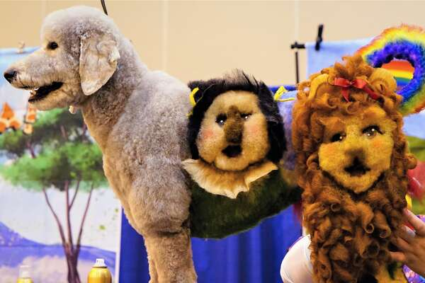Houston World Series of Dog Shows returns to NRG Center July 17 through July 21. Contests include creative and competitive dog grooming and the conformation competition.