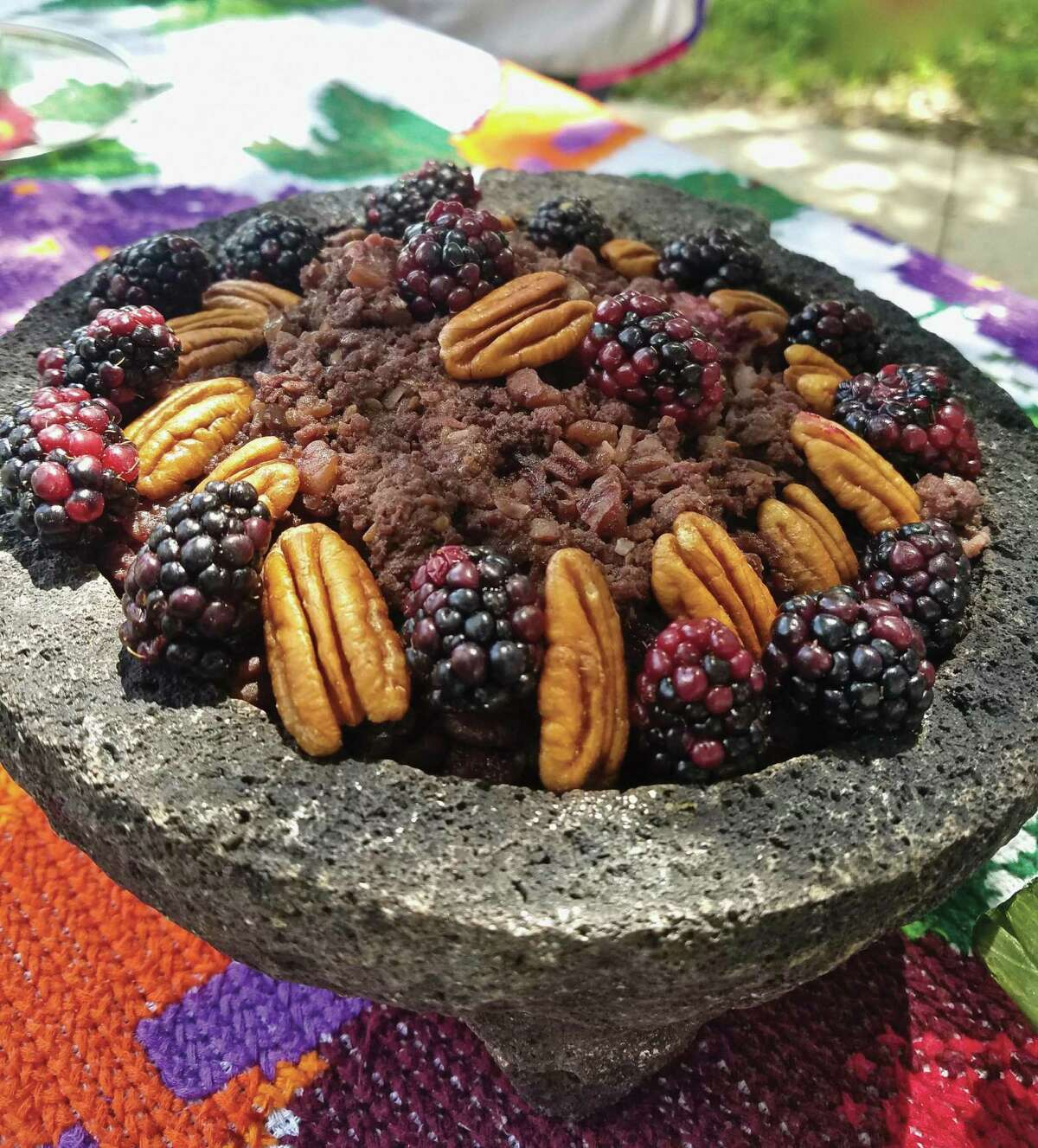 """Bisonte con Moras (Bison with Berries) from """"Don't Count the Tortillas"""" by Adán Medrano"""