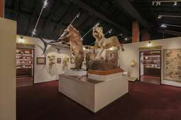 Houston Museum of Natural Science at Sugar Land is getting a $325,000 revamp.