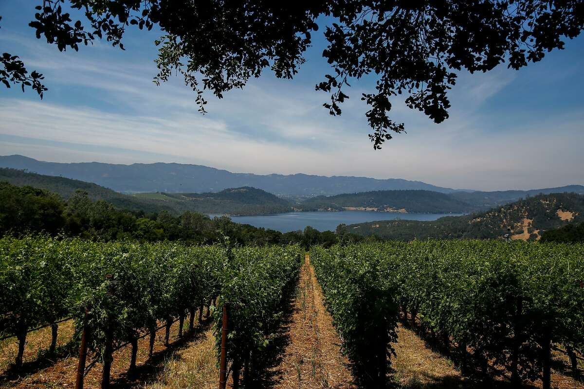 The view of Lake Hennessy from the vineyards of Bryant Estate winery as seen on Thursday, June 13, 2019, in St. Helena, Calif.