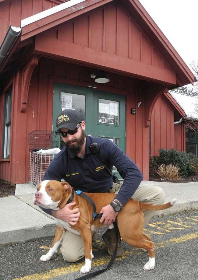 Army vet now on animal patrol - The Ridgefield Press