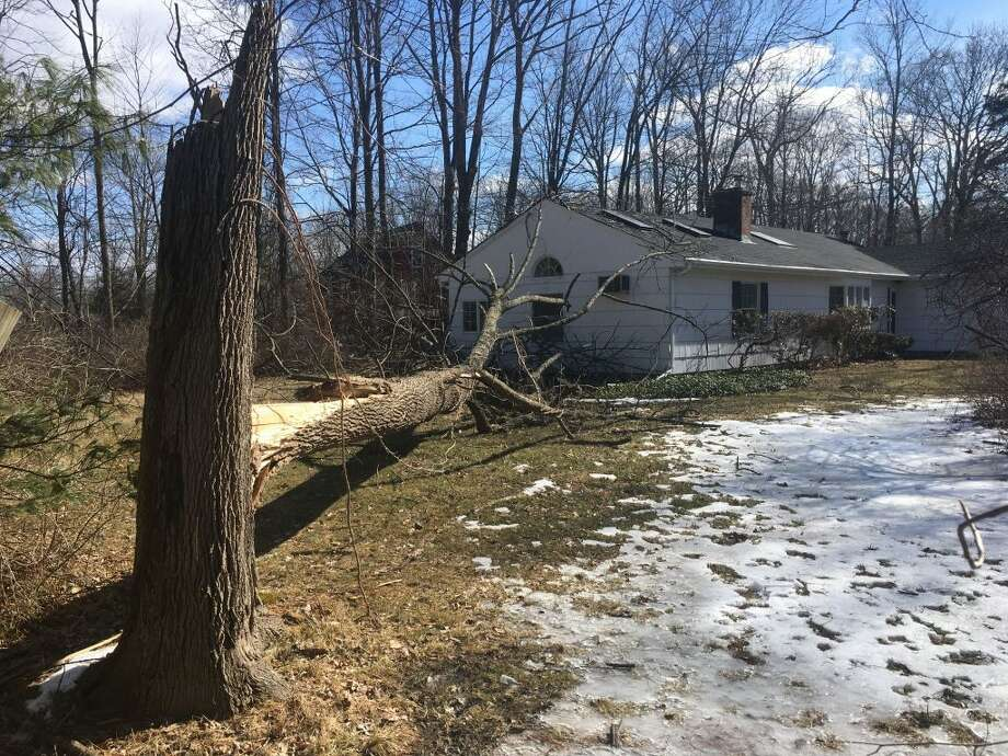 A tree that fell on a house at 185 Branchville Road. — Peter Yankowski photo