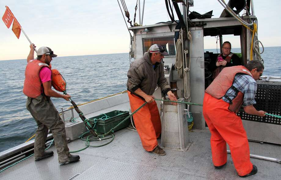 Crew members from the Bay Port Fish Company get fish from nets that are set up in Lake Huron by Port Austin on Wednesday, June 12, 2019. They got around 800 pounds of fish this day. Photo: Andrew Mullin/Huron Daily Tribune