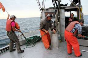 Crew members from the Bay Port Fish Company get fish from nets that are set up in Lake Huron by Port Austin on Wednesday, June 12, 2019. They got around 800 pounds of fish this day.