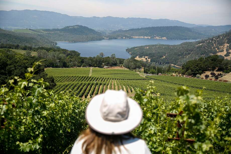 """Bryant Estate winemaker Kathryn """"KK"""" Carothers stands at the top of the vineyard on Napa Valley's Pritchard Hill, overlooking Lake Hennessey. Photo: Josie Norris / The Chronicle"""