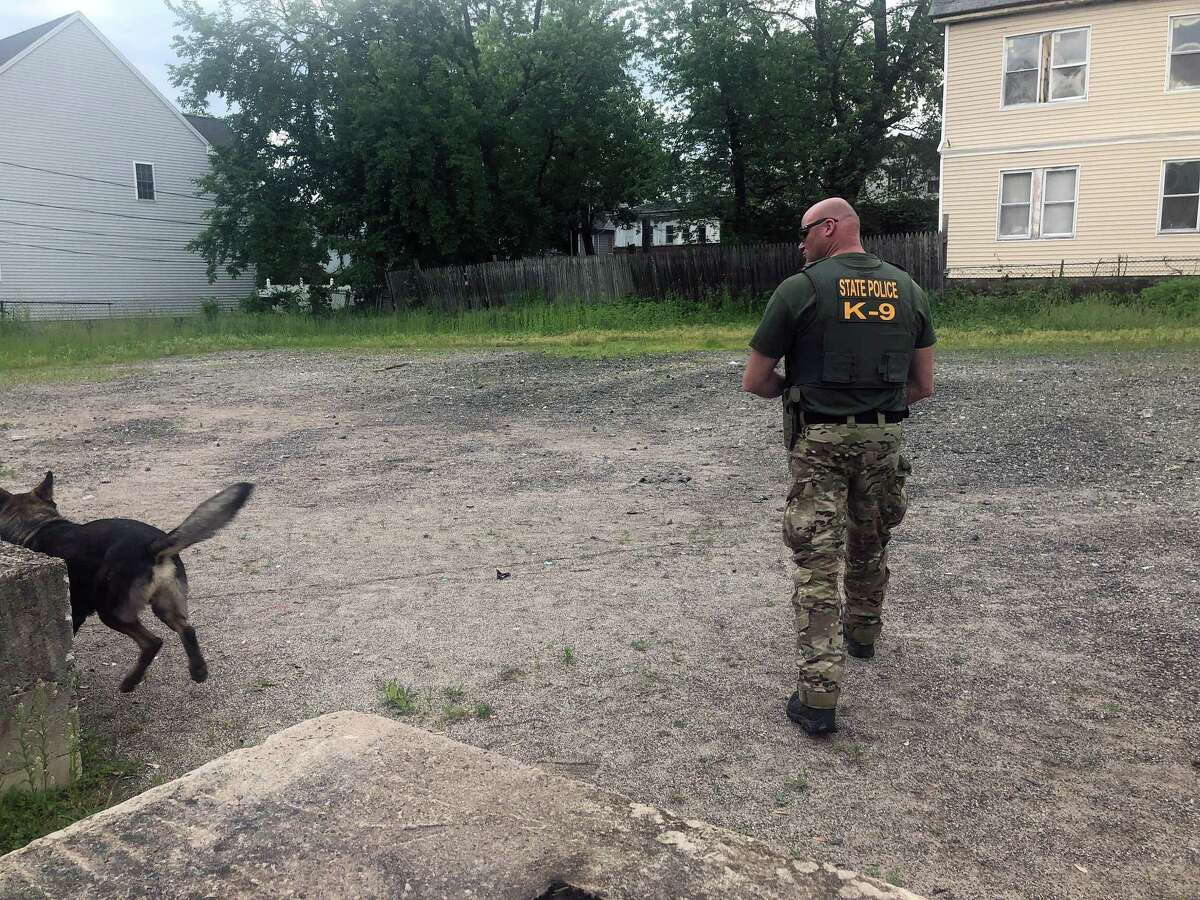State police search the area of Albany Avenue in Hartford on May 31 after discovering Fotis Dulos discarded garbage bags in more than 30 trash bins one week earlier, according to his arrest warrant.