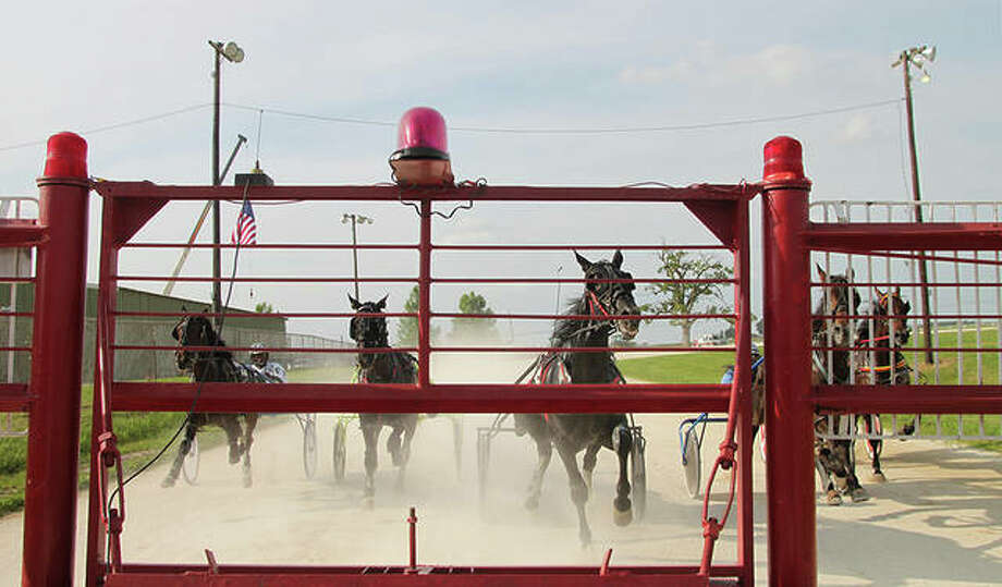 Horses and drivers were ready for the start of the second race Tuesday evening at the Greene County Fair. Photo: Rosalind Essig | Journal-Courier