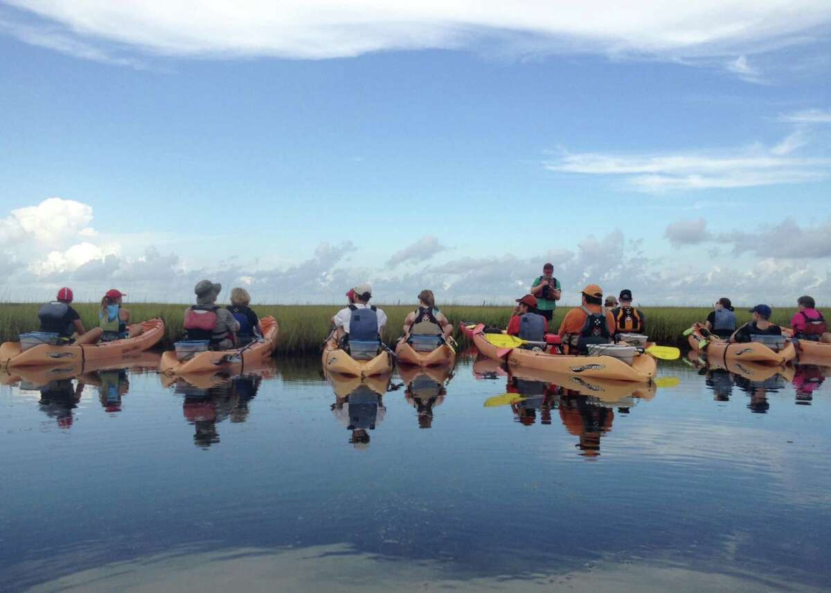 A kayak class learns about the coastal ecosystem in an Artist Boat class.