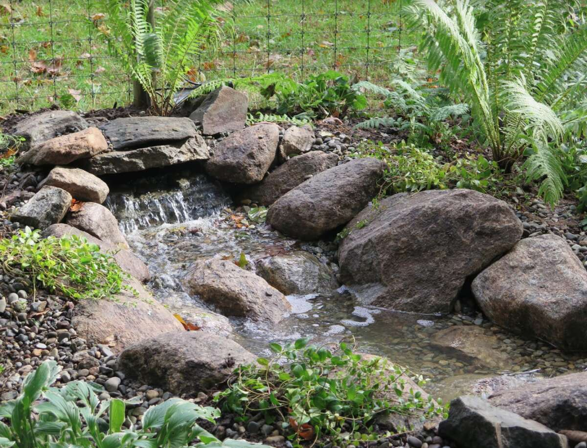 The cascading pondless waterfall fits in naturally at the DCA Bird Sanctuary, attracting birds and also butterflies in season.