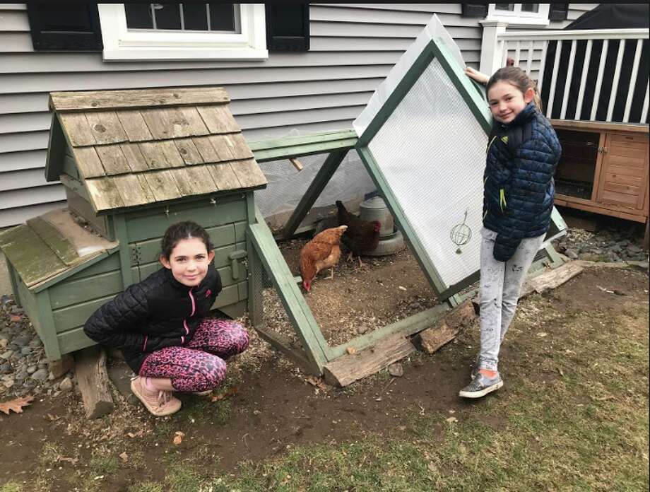 The Madson family chicken run and water heater, both of which are used to keep their chickens warm in the winter. From left, Riley Madson, 9, and her sister Kelsey, 8. The Madsons own four chickens: Fire, Zombie and (not pictured) Inky and Mosey.