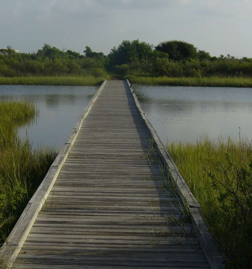 TRAVEL Galveston Travel 091607 11 - A bird sits on the boardwalk on the Clapper Rail Trail in Galveston Island State Park. Photo by Noelia Santos, Staff 081807 Photo: NOELIA SANTOS / SAN ANTONIO EXPRESS-NEWS / SAN ANTONIO EXPRESS-NEWS