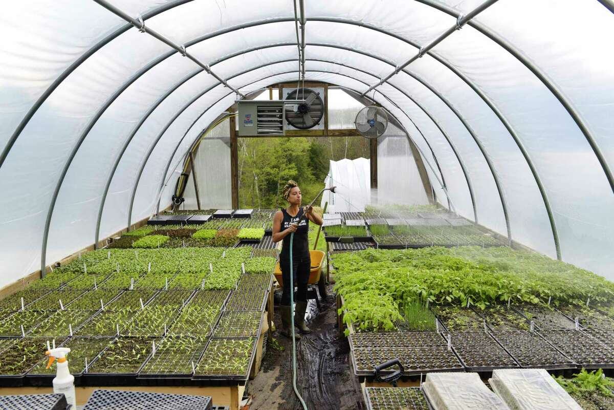 Leah Penniman, co-founder and co-director of Soul Fire Farm, waters seedlings in a greenhouse on Thursday, May 16, 2019, in Petersburg, N.Y. (Paul Buckowski/Times Union)