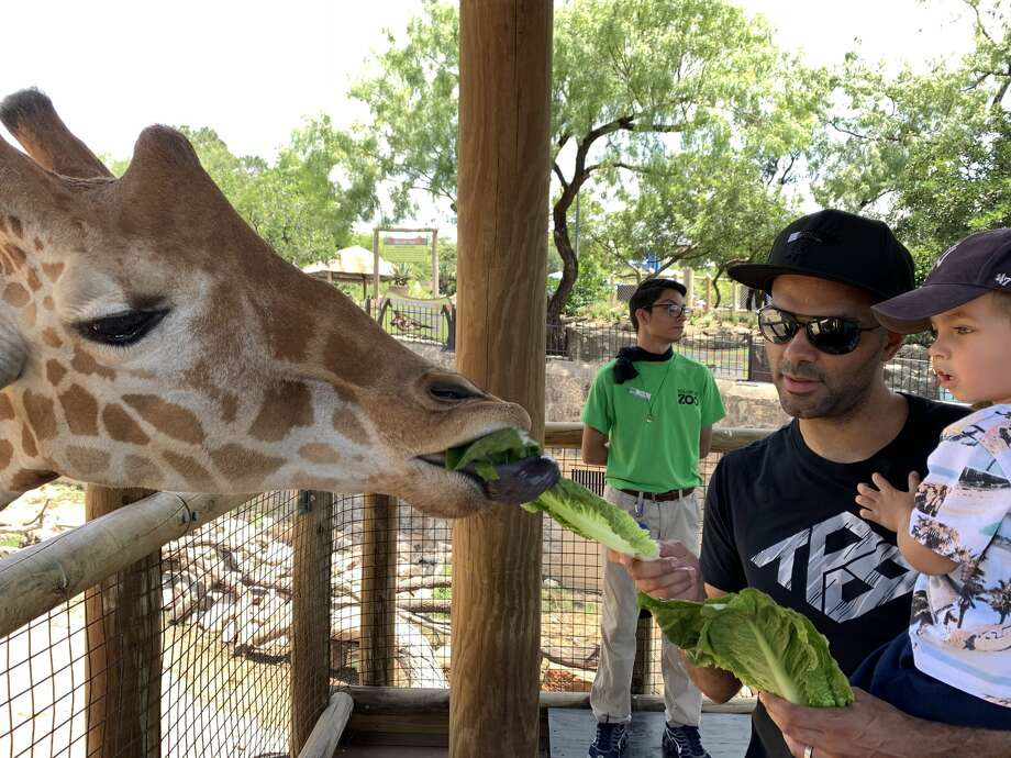 The zoo shared pictures with mySA showing four-time NBA Champion Tony Parker and his sons meeting and feeding different animals on Tuesday. Photo: Courtesy, Tim Morrow