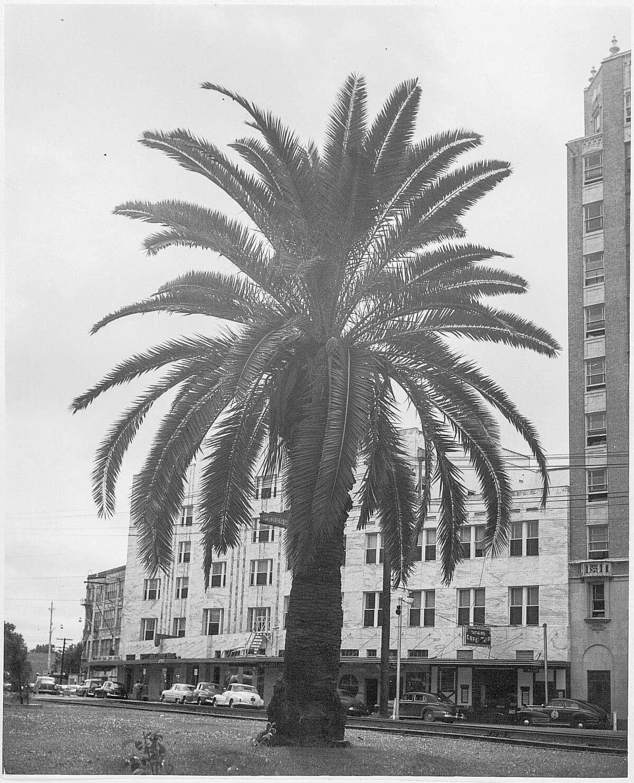 An undated photo of downtown Beaumont. Enterprise Archive Photo