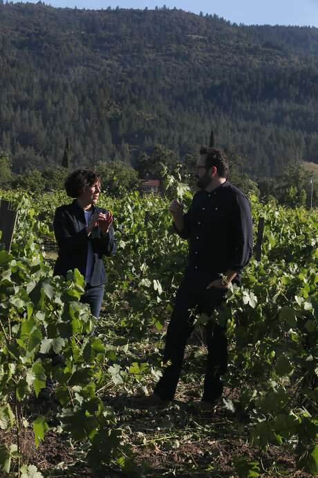 """It's a spaghetti red,"" says winemaker Francoise Peschon of Charbono. Here she stands with Matt Morris in the Tofanelli Vineyard, the source of the Charbono they make together. Photo: Liz Hafalia / The Chronicle"