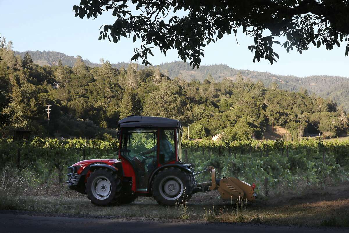 Vincent Toffanelli rides his tractor at his carbono vineyard at the end of the day on Thursday, June 6, 2019 in Calistoga, Calif.