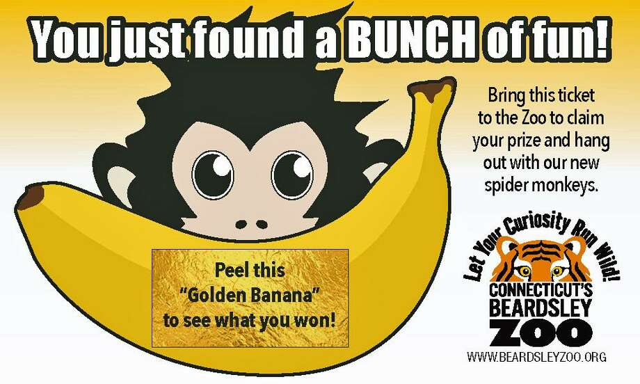Five hundred golden ticket bananas are hidden in children's books about monkeys — fiction and non-fiction — in libraries throughout the area. On Saturday, June 22, 2019, local residents can go to area libraries to find some hidden prizes, put there by the Beardsley Zoo in Bridgeport, Conn. Photo: Contributed Photo / Beardsley Zoo