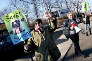 From left, Ann Ruggiero, Mary Letis and Cindy Vaporis carry signs during a fundraiser for legal and advertising costs for Dr. David Young's dog, Simon, at Frisco's Pizza in New Haven  Jan. 27, 2019. Simon was to be euthanized after biting a trespasser but now will be moved to Michigan instead.