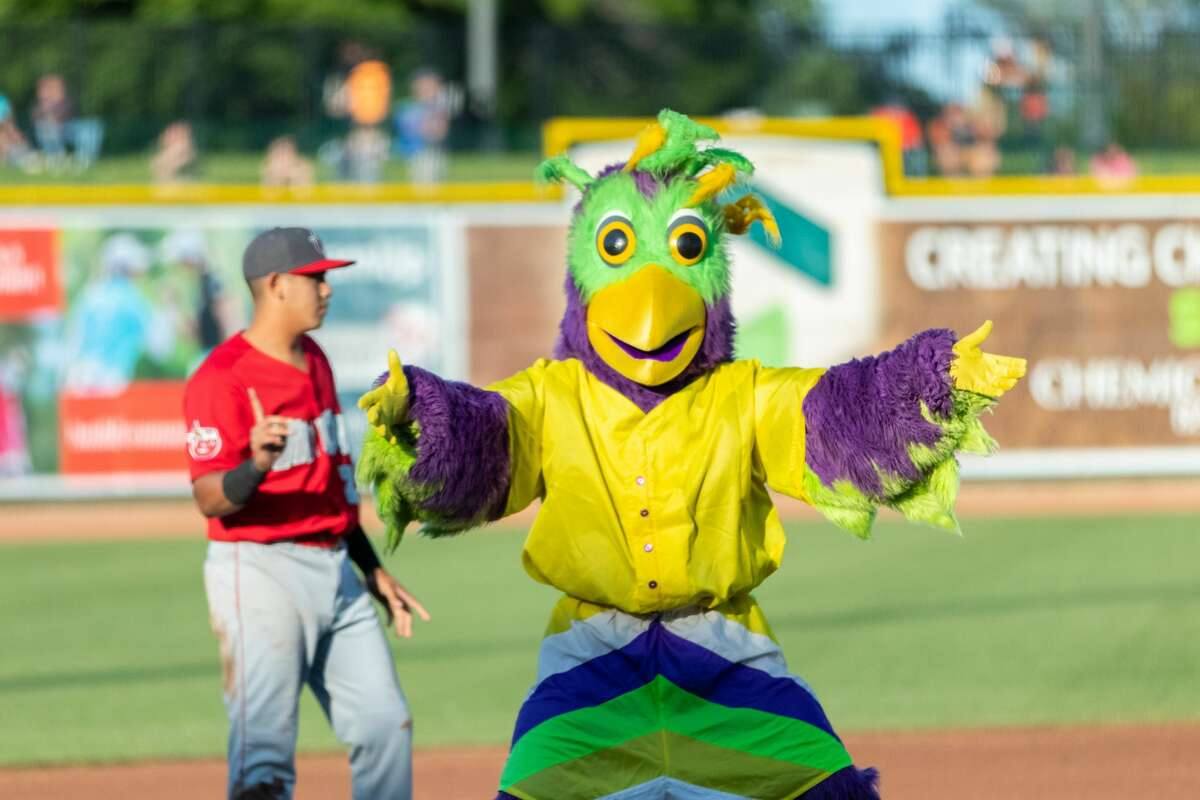 The Great Lakes Loons took on the Fort Wayne TinCaps on Saturday at Dow Diamond.