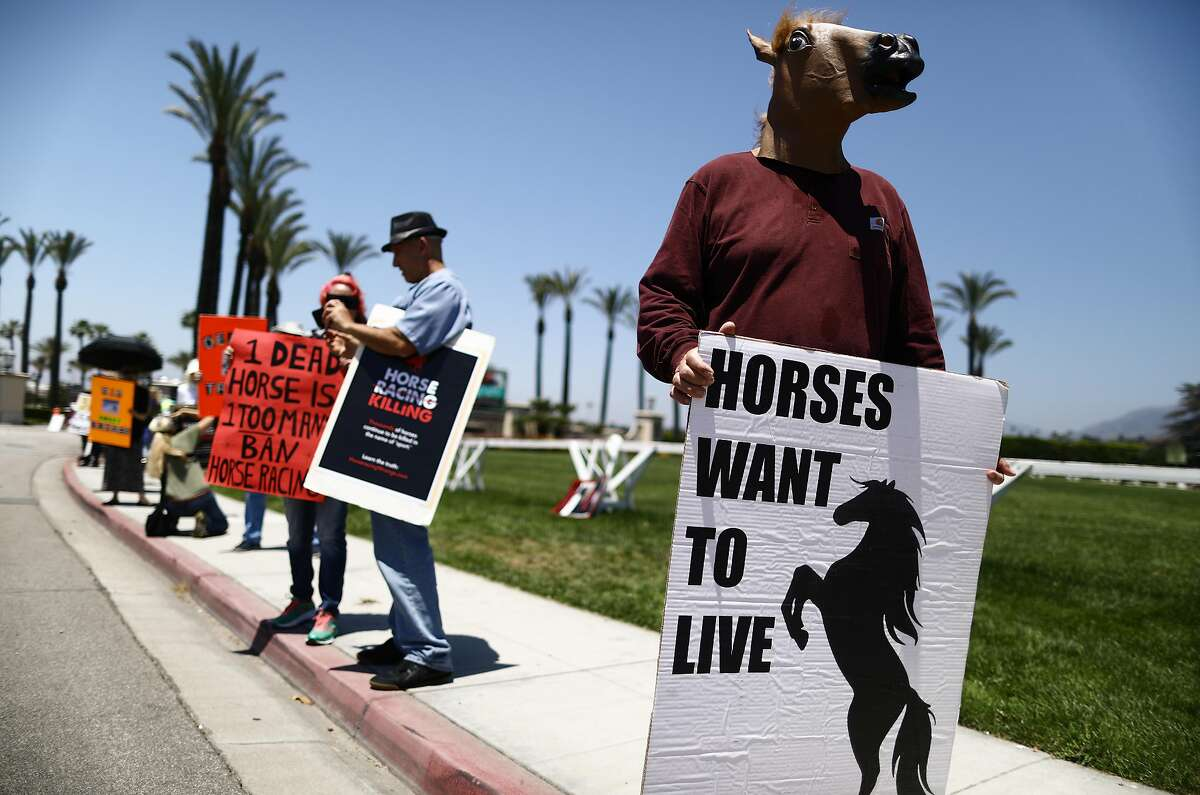 ARCADIA, CALIFORNIA - JUNE 23: Animal rights activists protest horse racing deaths outside Santa Anita Park on June 23, 2019 in Arcadia, California. Santa Anita ownership banned a Hall of Fame trainer yesterday following the death of a fourth horse from his stable at the track. It was the 30th race horse to die at the famed racetrack since December 26. Today is the final day of horse racing for the season at Santa Anita. (Photo by Mario Tama/Getty Images)
