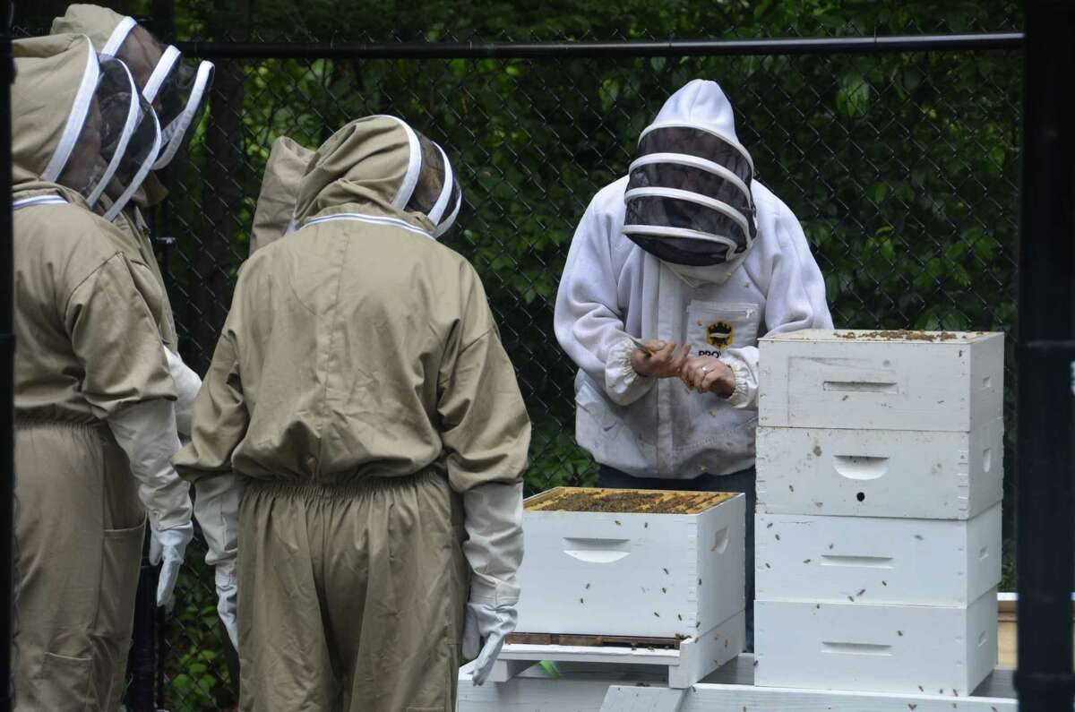 Beekeeper Ben Hurd of Middlebury leads Subway employees in a lesson in beekeeping June 19, 2019 at Subway headquarters in Milford, Conn.