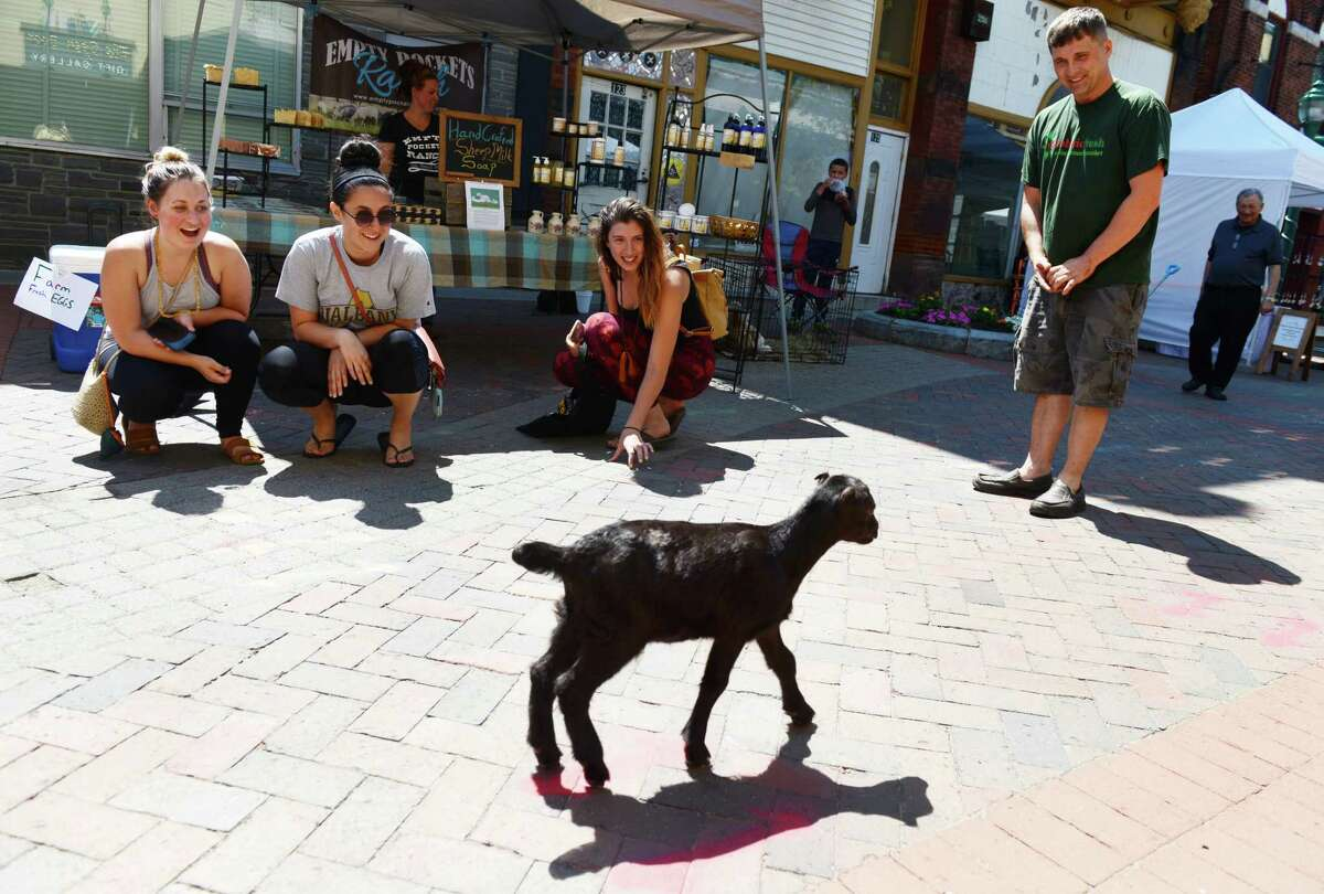 Passerby coo at Willie, Empty Pocket FarmOs house goat, center, at the Schenectady Greenmarket on Sunday, June 23, 2019, in Schenectady, N.Y. (Catherine Rafferty/Times Union)
