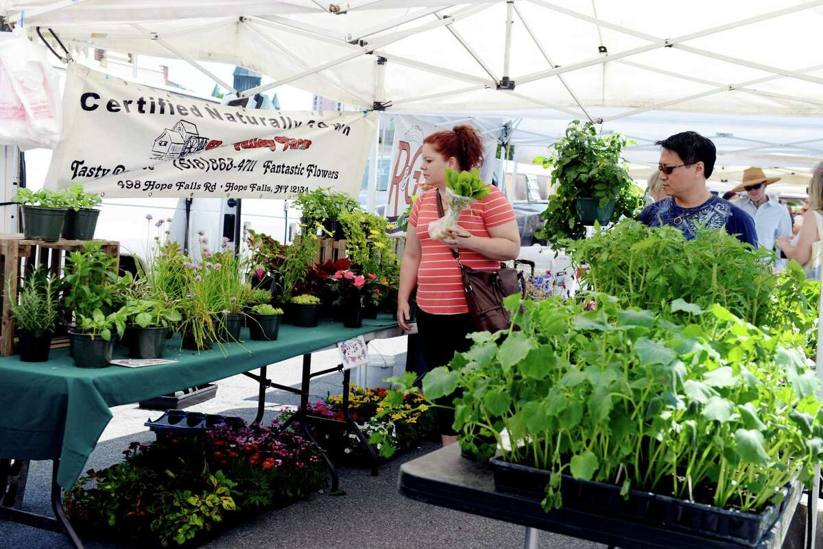 Shoppers browse at the Schenectady Greenmarket on Sunday, June 23, 2019, in Schenectady, N.Y. (Catherine Rafferty/Times Union)