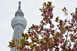 The Tokyo Skytree is seen in Tokyo on April 24, 2019. (Photo by Charly TRIBALLEAU / AFP)        (Photo credit should read CHARLY TRIBALLEAU/AFP/Getty Images)