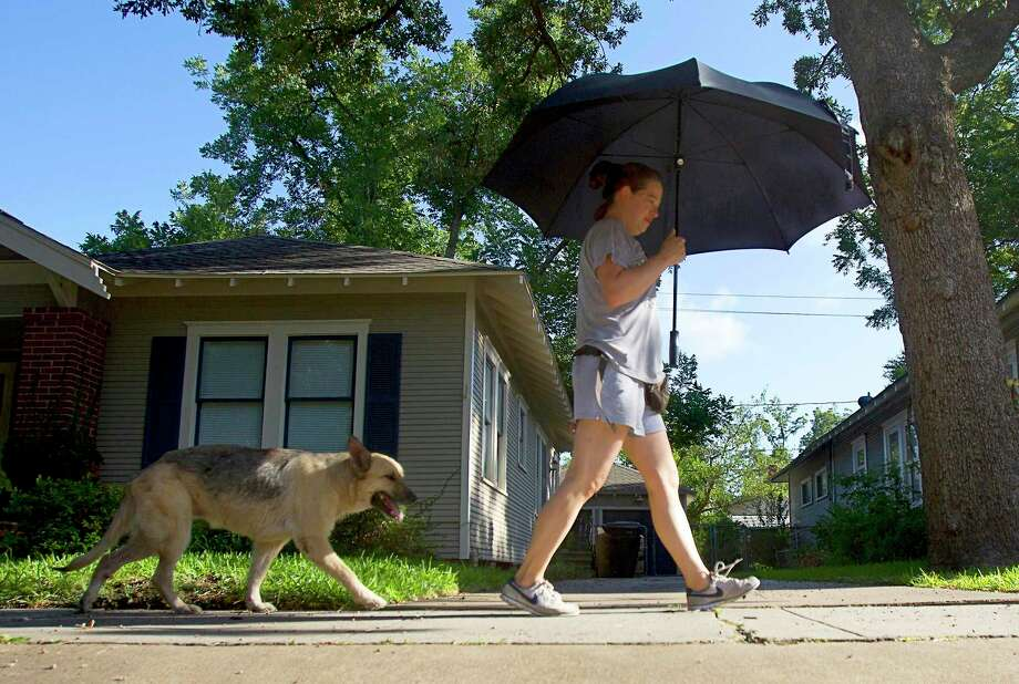 Daniela Reboa returns to her home on Cottage Street after walking Zuni. Photo: Cody Duty, Staff / Houston Chronicle / © 2011 Houston Chronicle