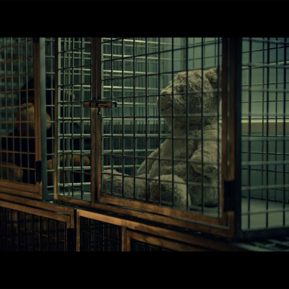 "A still shot from People for the Ethical Treatment of Animals' video, ""A Teddy Bear Tackles the Trauma of Animal Experimentation,"" which was rejected as a paid ad on WTNH-TV but which may be shown in a news segment. Photo: People For The Ethical Treatment Of Animals / Contributed Photo"