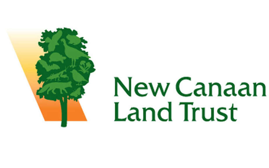 A bird release, stone wall building and an internship are upcoming at the New Canaan Land Trust. New Canaan Land Trust logo