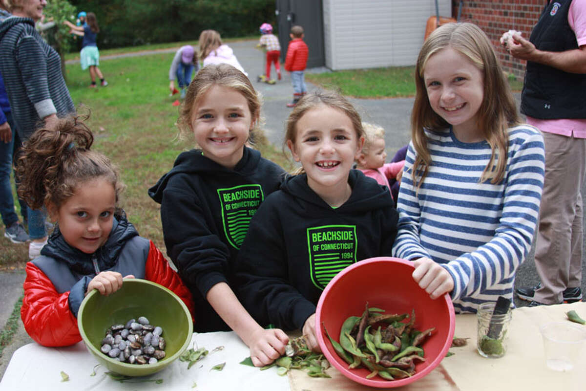 Students open bean pods at South School's first Garden Harvest Day. - Contributed photo